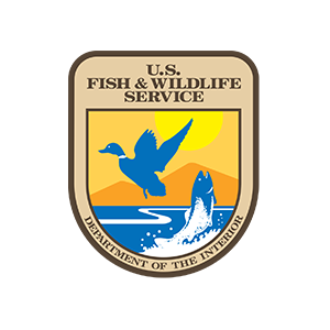 new-fish-wildlife