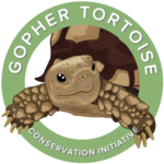 cropped-Gopher-tortoise-CE_three-01